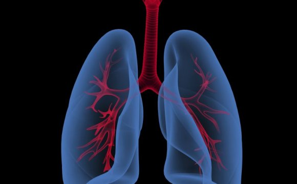 Asthma Phenotypes in Asthma: A